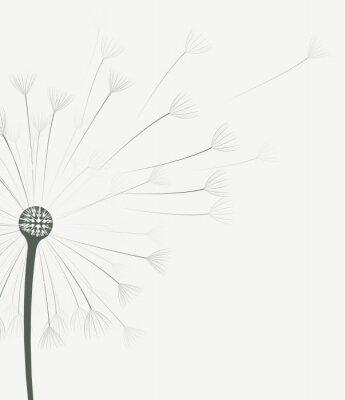 Sticker Vecteur, pissenlit, fleur