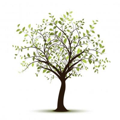 Sticker vecteur série, arbre vectoriel blanc fond - arbre vert sur fond blanc