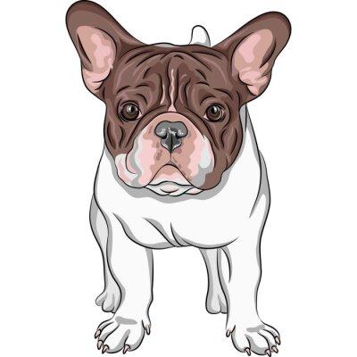 Sticker vecteur sketch chien domestique race bouledogue français