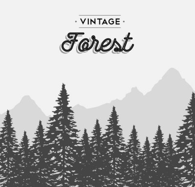 Sticker Vendange, forêt, texte, étiquette, hiver, arbre, paysage