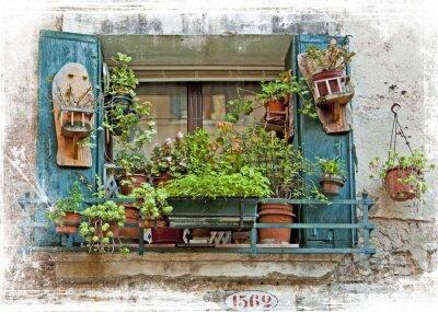 Sticker Venise, vieilles petites fenêtres avec des plantes