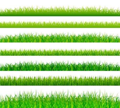 Sticker Vert, herbe, frontières, ensemble