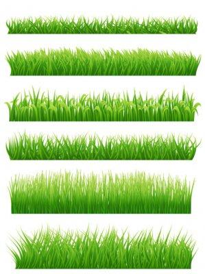 Sticker Vert, herbe, frontières, ensemble, blanc Illustration vectorielle