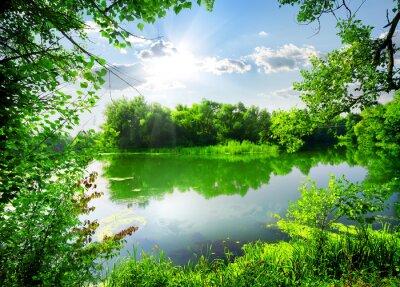 Vert printemps sur la rivière
