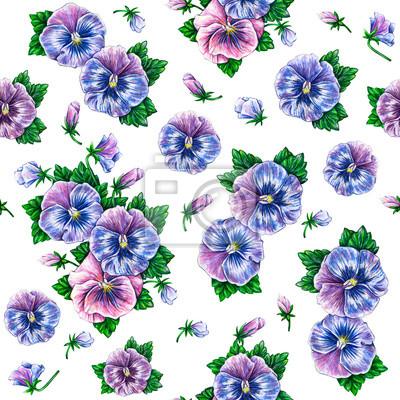 Viola tricolor. Aquarelle fleurs Seamless.