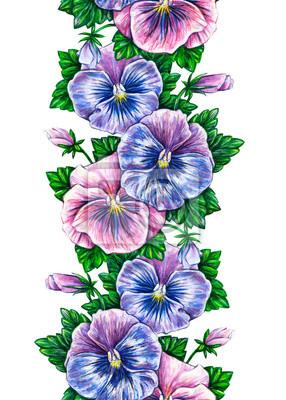 Viola tricolor. Floral seamless watercolor frame border