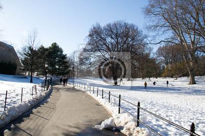 Voie entre la neige au parc