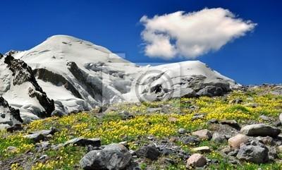 Vue sur les montagnes du Mont-Blanc-France