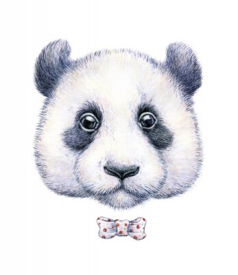 Sticker Water color drawing of a panda on white background