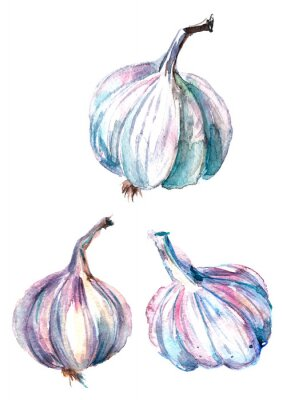 Watercolor abstract drawing, garlic, beautiful spot, blot. On white background with splashes of paint. Fresh garlic set,  isolated, watercolor illustration. Hand drawn painting