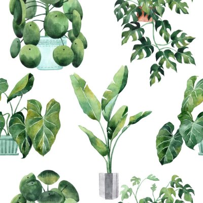 Sticker Watercolor seamless pattern with tropical leaves and houseplants leaves. Greenery. Succulent. Floral Design element. Perfect for invitations, cards, prints, posters
