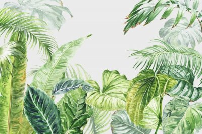 Sticker Watercolor tropical wall mural with palm tree leaves. Watercolour illustration.