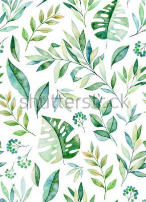 Sticker Watercolors feuilles transparent motif de branche sur fond blanc. Texture avec les verts, les branches, les feuilles, les feuilles tropicales, le feuillage. Parfait pour le mariage, la conception de l
