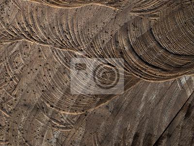 assomm couper avec la tron onneuse arbre bois fond macro peintures pour le mur tableaux. Black Bedroom Furniture Sets. Home Design Ideas